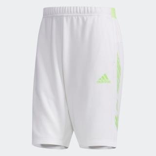 5T スウェットショーツ / 5 Tool Sweat Shorts