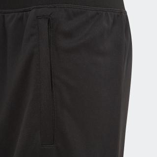 ボールド ショーツ / Bold Shorts