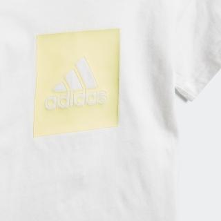 ロゴ サマーセット / Logo Summer Set