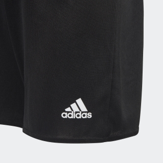 Estro 19 ショーツ / Estro 19 Shorts