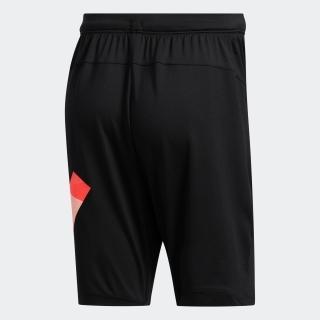 東京 バッジ オブ スポーツ ショーツ / Tokyo Badge of Sport Shorts