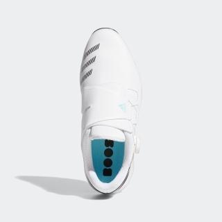 ゼッドジー21 ボア / ZG21 BOA Golf Shoes