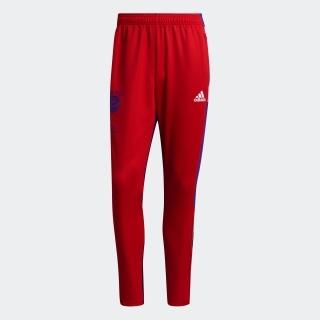 FCバイエルン Human Race トレーニングパンツ / FC Bayern Human Race Training Pants