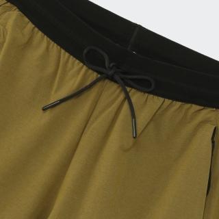 テレックス ライトフレックス ハイキングパンツ / Terrex Liteflex Hiking Pants