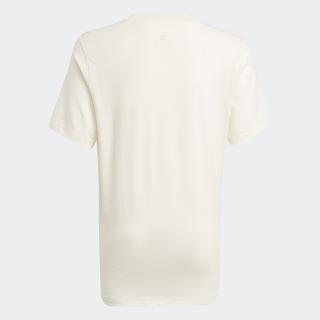 グラフィック ノンダイ オーガニックコットン Tシャツ