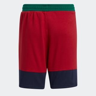 リトルストライプ ショーツ / Lil Stripe Shorts