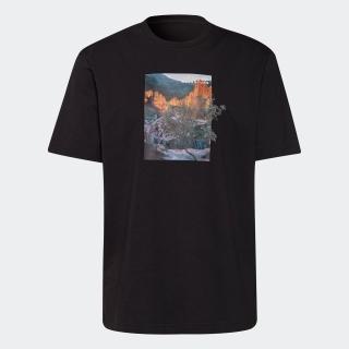 アディダス アドベンチャー ランドスケープ Tシャツ
