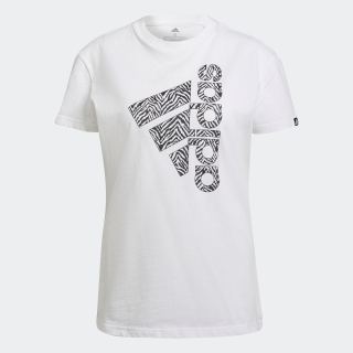 ゼブラ ロゴ グラフィック 半袖Tシャツ